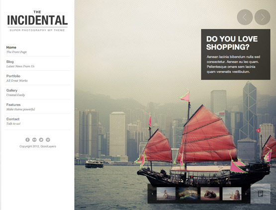 premium  Incidental   High Class Photography WordPress Theme