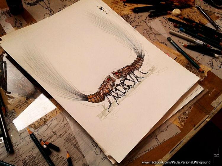 drawing paula duta