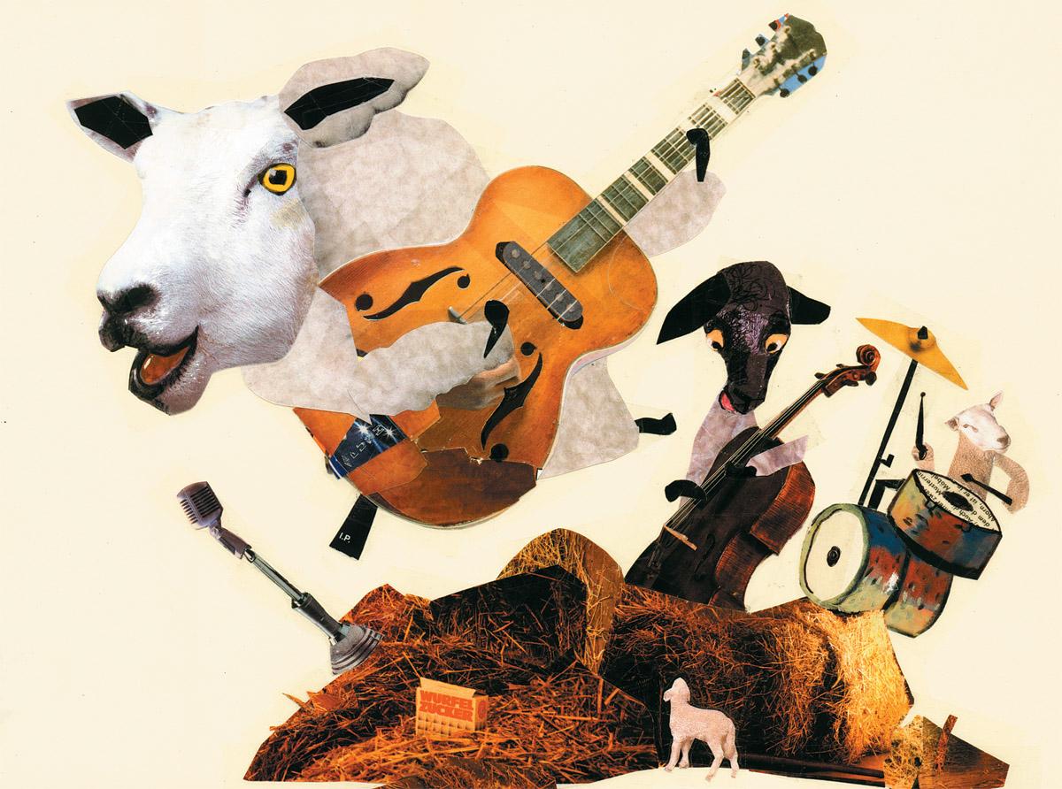 Wolle die Lammfellos 5