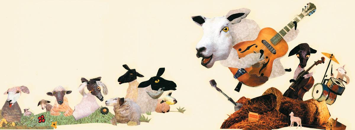 Wolle die Lammfellos 6