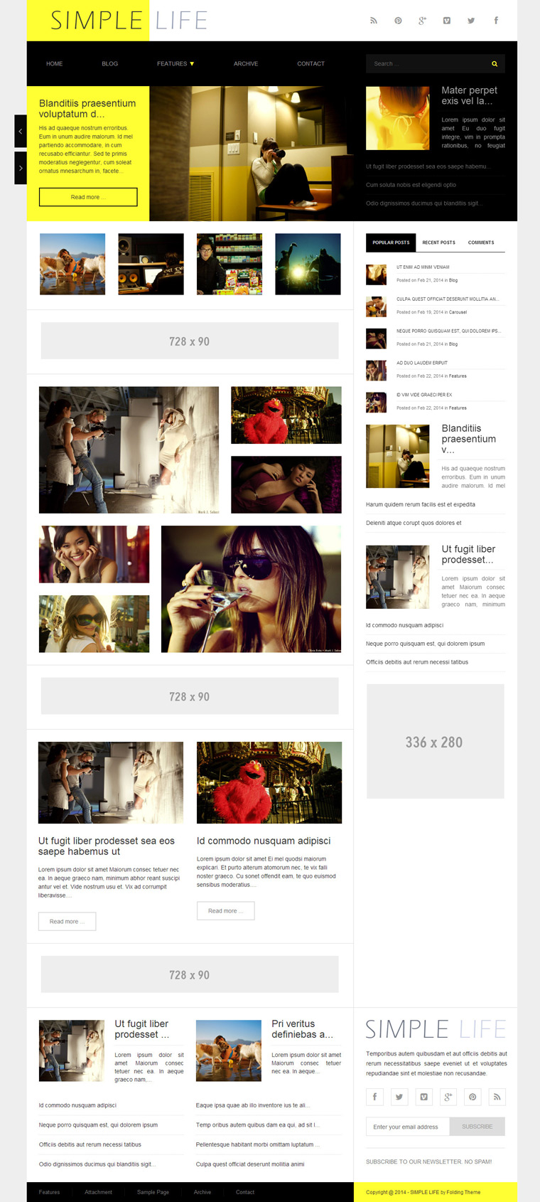 adsense wordpress theme