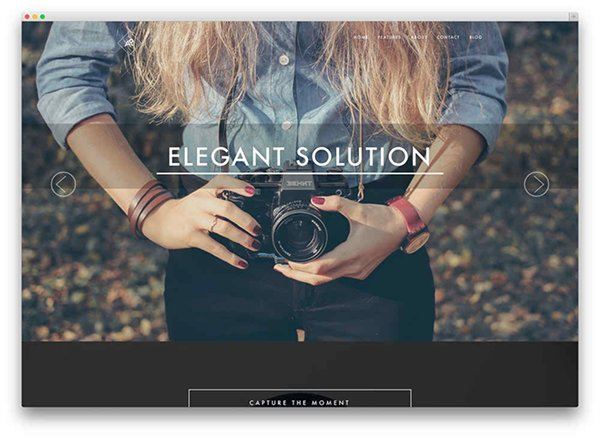 Free WordPress One Page Parallax Themes0012