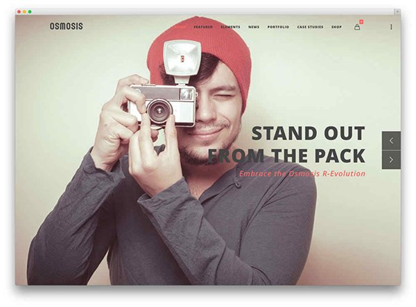 Free WordPress One Page Parallax Themes006