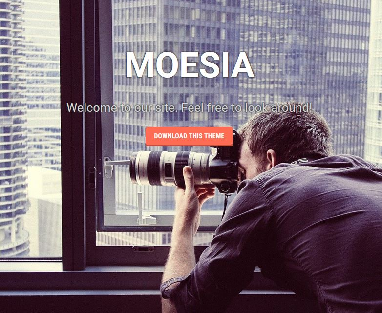 amoesia free wordpress theme