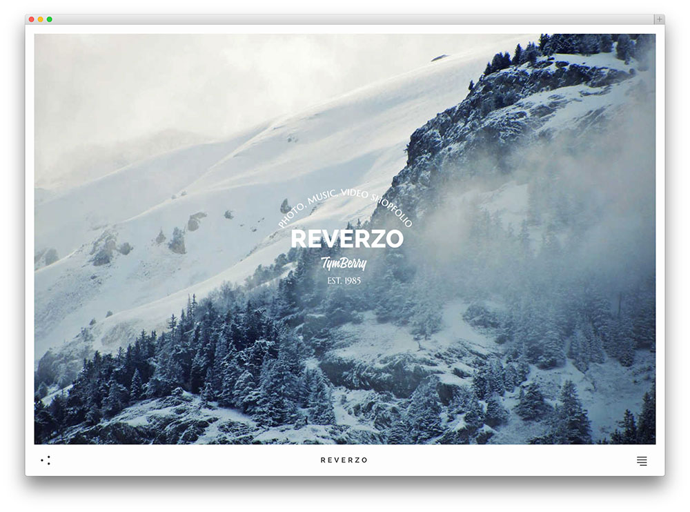 reverzo wordpress themes