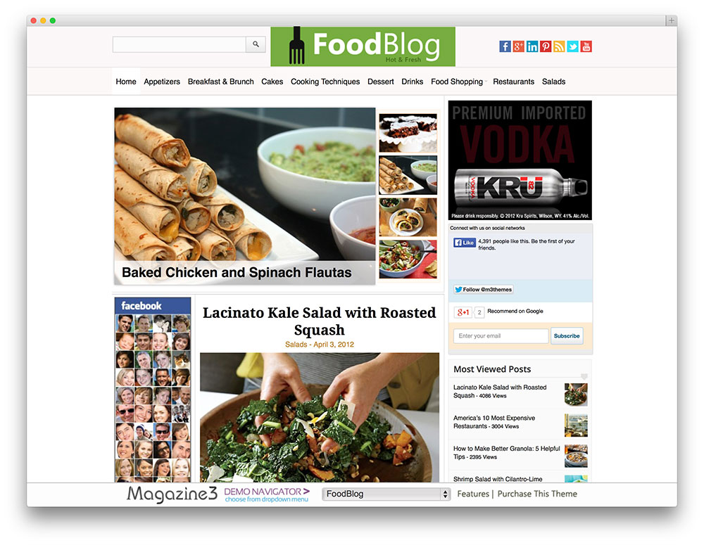 foodblog wordpress theme