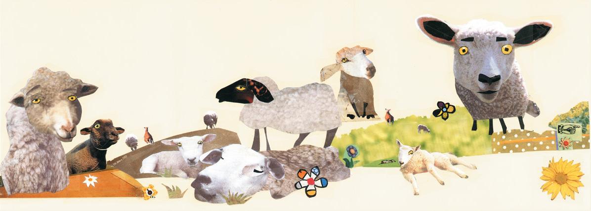 Wolle die Lammfellos 1